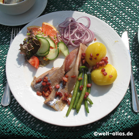 Glückstadt ist berühmt für seine kulinarische Spezialität, den Original Glückstädter Matjes, Kreis Steinburg