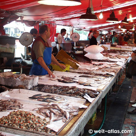 Fischmarkt in Chioggia