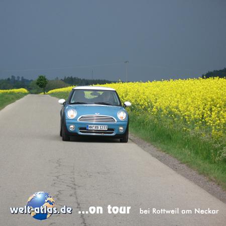 welt-atlas ON TOUR Mini im Raps bei Rottweil, Neckar,Baden-Württemberg, Deutschland