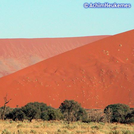 Die Dünen von Sossusvlei gehören zu den höchsten Dünen der Welt, Höhe bis ca. 300m. Photo desExtremsportler Achim Heukemes, Zehnfach-Triathlet, Ultraläufer - www.heukemes.net