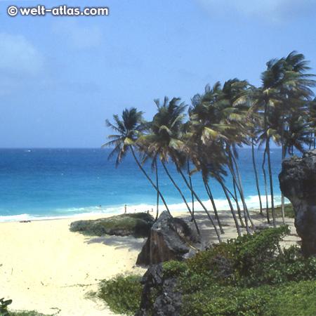 Bottom Bay, Barbados - eine der schönsten Buchten der Insel, mit Schatten, starker Strömung und Brandung