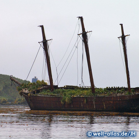 Wreck of Bayard, bay of Ocean Harbour, South Georgia