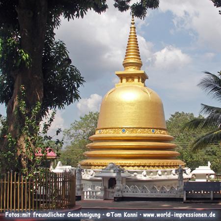 Golden Buddhist stupa, Dambulla, Sri Lanka