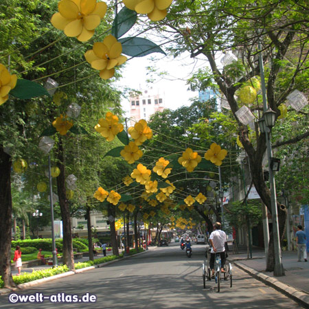 Tet flowers and blossoms, Ho Chi Minh City