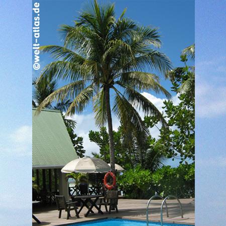Gran Anse Praslin, Indian Ocean Lodge
