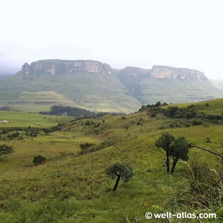 Drakensberge in Kwa-Zulu Natal