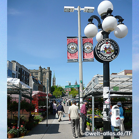 York street in the ByWard Market, Ottawa