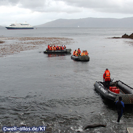 Cape Horn, landing of the Zodiacs, Via Australis in the background