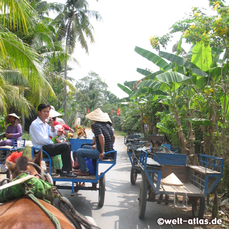 Tour by car, boat and horse cart, Mekong River Delta