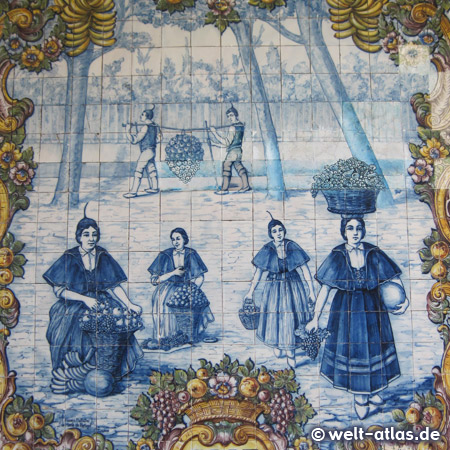 Beautiful tile images in the Market Hall of Funchal, here the azulejos with vegetables and fruits