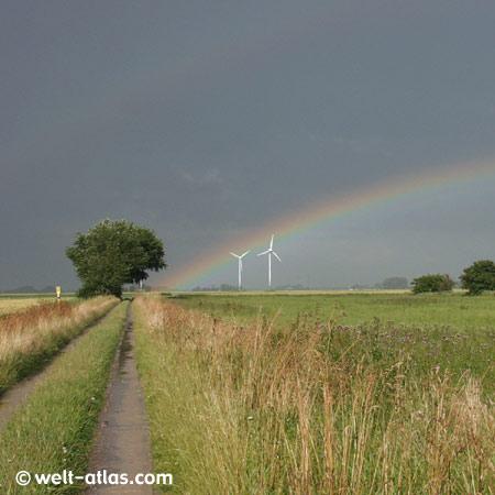 Norddeutsche Landschaft mitRegenbogen, Feldern, Baum, Windräder