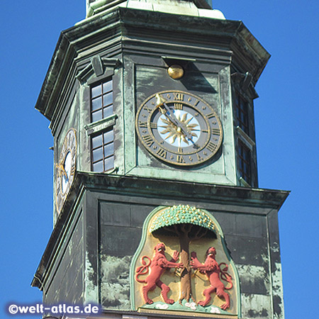 Uhr und Stadtwappen mit roten Löwen und Birnbaum am Turm des Rathauses in Pirna