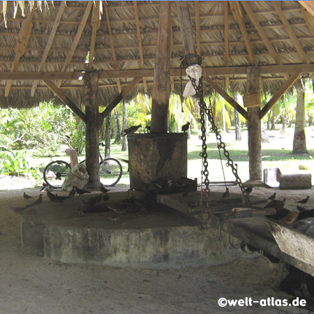 Kopramühle, L'Union Estate, La Digue, Seychellen