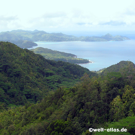 view from tea plantation to Grand´ Anse and Petite Anse, Mahé,