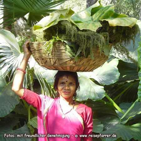 Junge Frau im Sahelion Ki Bari, Garten der Jungfrauen, Botanischer Garten/Park  in Udaipur