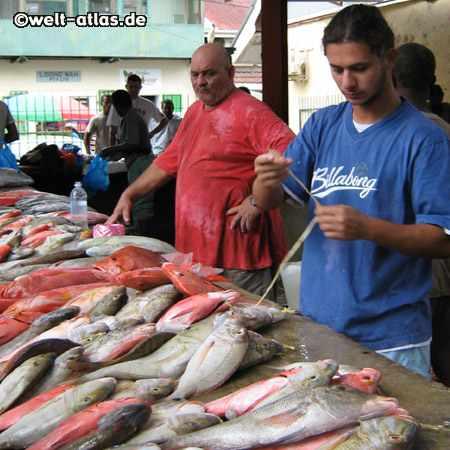 Fischhändler auf dem Markt in Victoria,Seychellen