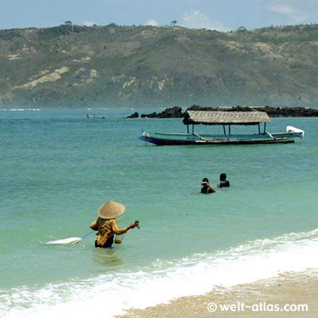 Fischer bei der Ernte von Seetang,Kuta, Süd-Lombok am Strand