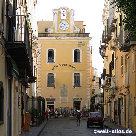 Meeresmuseum von Ischia in Ischia-Ponte, Museo del Mare, Via Giovanni da Procida