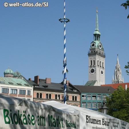 Viktualienmarkt mit Maibaum, im Hintergrund die Türme von Peterskirche und Neuem Rathaus