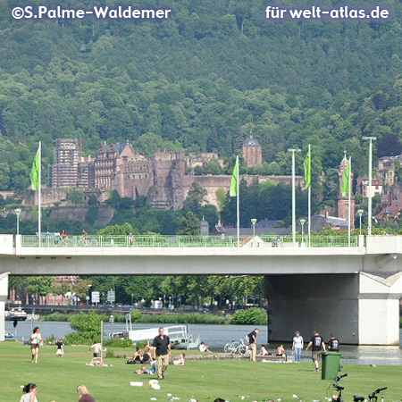 Heidelberg Castle and Neckar River