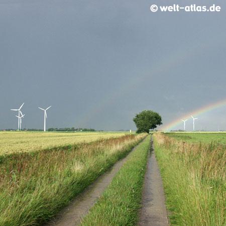Nordeutsche Landschaft mitRegenbogen, Feldern, Baum, Windrädern