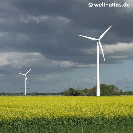 Windräder und Rapsfeld, Wolkenbildung