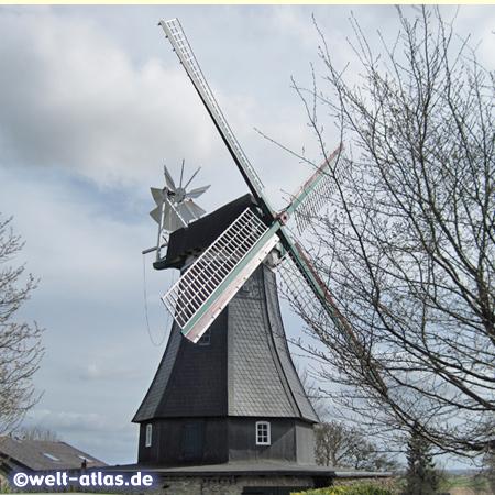 Die Windmühle Margaretha im Storchendorf Bergenhusen