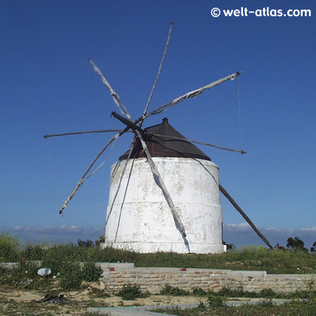Mühle in Vejer de la Frontera