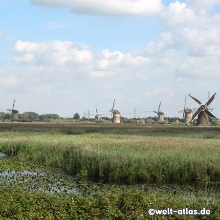 Windmühlen in Kinderdijk am Overwaard Polder
