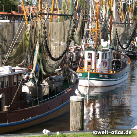 Krabbenkutter im Hafen von Greetsiel an der Leybucht