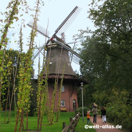 Windmühle in Bad Zwischenahn