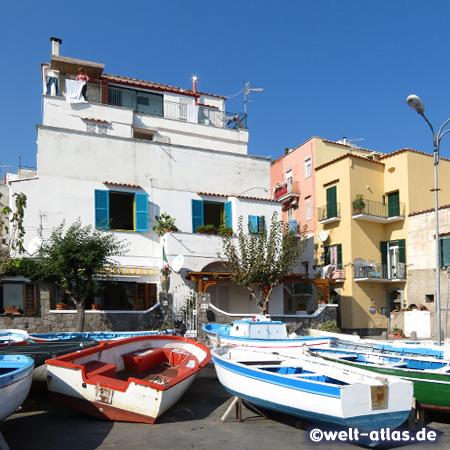 Viele leuchtend farbige Fischerboote in Ischia Ponte