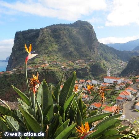 Blick vom Fortim do Faial und den blühenden Strelitzien hinunter auf den Ort Faial und den imposanten Penha de Águia, dem Adlerfelsen