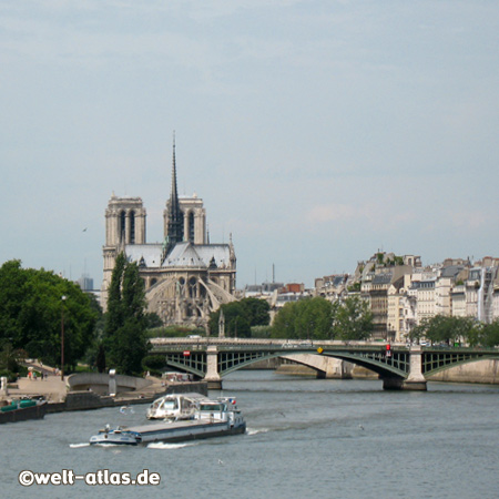 Brücke über die Seine, dahinter die Kathedrale Notre-Dame, Paris