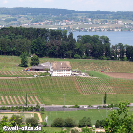 Pfäffikon, Zürichsee, Schweiz