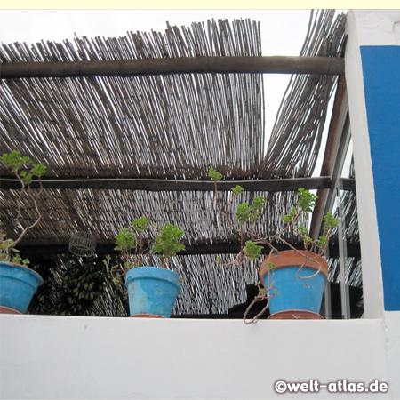 Blaue Blumentöpfe auf einer Terrasse in einer Gassen auf Stromboli