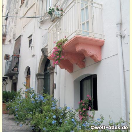 Gasse in Lipari, Blumen vor den Häusern