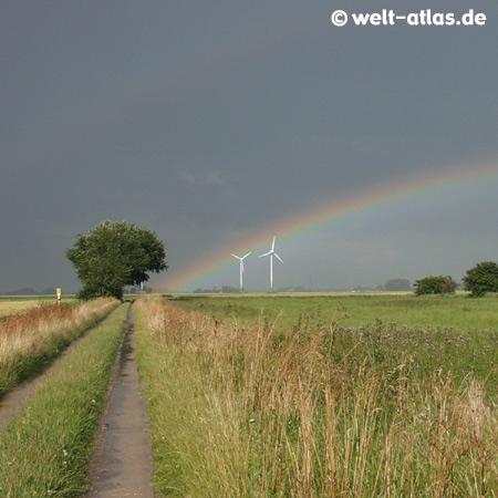 Dithmarscher Landschaft mitRegenbogen, Feldern, Baum, Windrädern