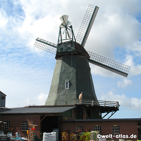 Windmill Anna in Süderhastedt