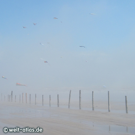 Kites float above the dense fog  – on the enormous beach of St. Peter-Ording