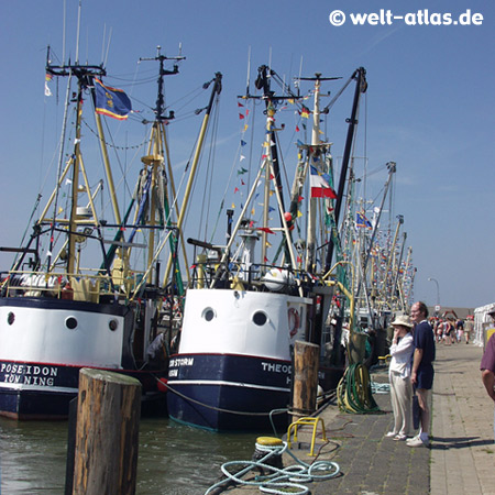 Krabbenkutter am Eidersperrwerk,gebaut zum Schutz vor Sturmfluten der Nordsee