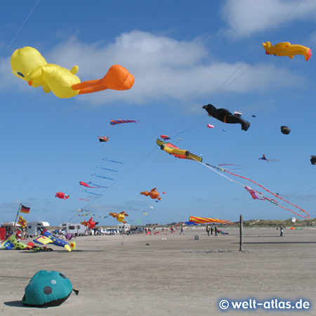 Drachenfestival in St. Peter-Ording am Strand