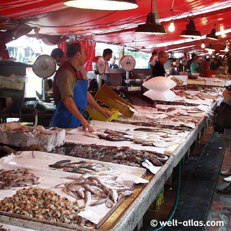 Fish Market in Chioggia