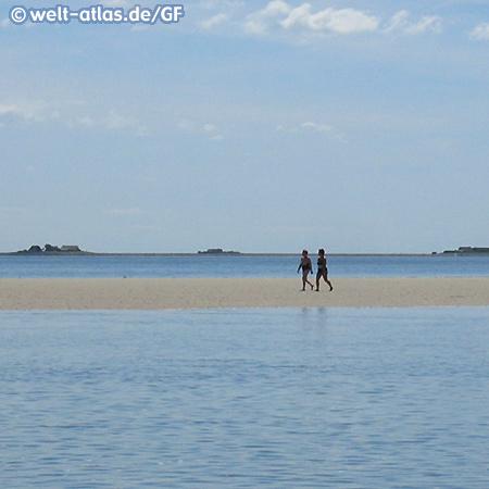 Wattläufer vor Föhr, Halligen im Hintergrund, Nationalpark Schleswig-Holsteinisches Wattenmeer UNESCO Weltnaturerbe