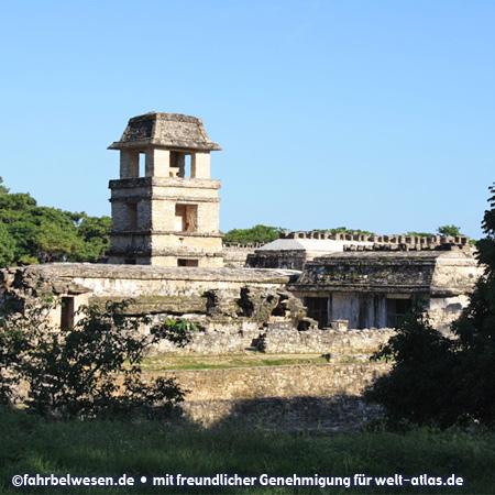 Mayaruinen von Palenque – UNESCO-Weltkulturerbe – Foto:©fahrbelwesen.de
