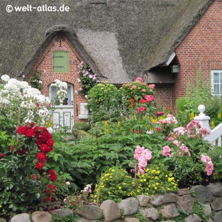 Cottage garden in St. Peter-Ording, Northern Friesland