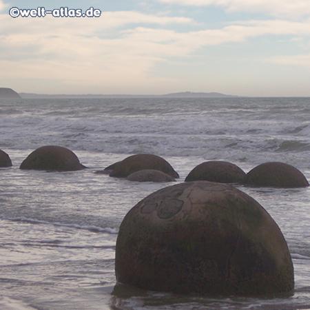 Moeraki Boulders am Koekohe Beach,Verdichtung von Kalkkristallen, geologische Attraktion, hauptsächlich bei Ebbe zu sehen