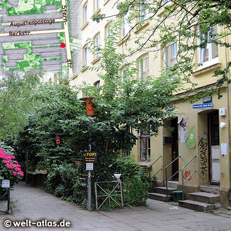 Lovingly tended terrace, Sternstraße, Karoviertel