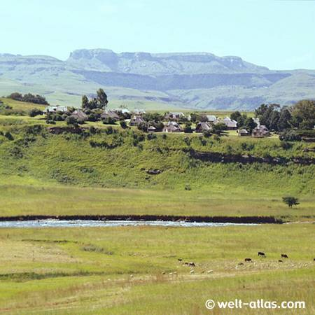 Blick vom Hlalanathi Drakensberg Resort