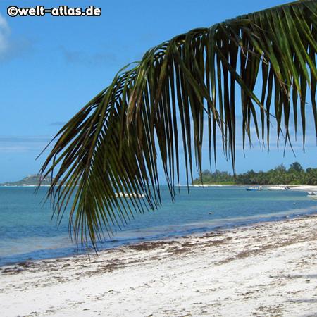 Strand Grand Anse, Praslin, Seychellen